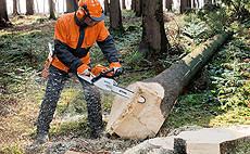 Píly na ošetrovanie stromov